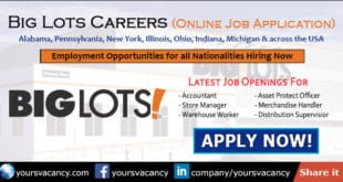 Big Lots Careers