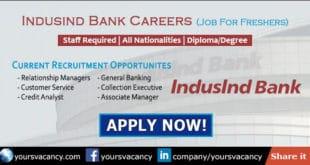 Indusind Bank Career